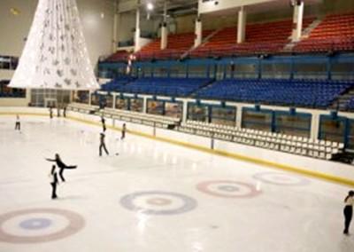 Patinaje sobre hielo en inglés